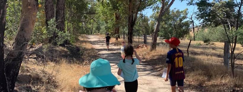 children walking along a bushwalking track
